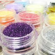 Nail Dust Glitter Powder 12 Colour