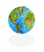 Travel Smart Smart Tag, World