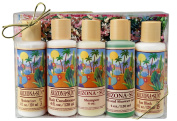 Gift Set - Five - 120ml Bath Products - Includes Moisturiser - Tanning Oil - Shampoo - Hair Conditioner - Bath and Shower Gelee - Relaxing - Great Gift Idea for Any Occasion