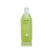 Elucence Volume Clarifying Shampoo 300ml