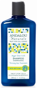 Andalou Naturals - Shampoo Age Defying Thinning Hair Treatment with Fruit Argan Stem Cells - 340ml