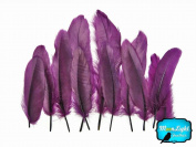 Moonlight Feather, Goose Feathers - Purple Loose Goose Satinette Feathers - 10ml Pack