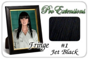 ProExtensions #1 Jet Black Pro Fringe Clip In Bangs