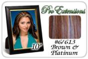 25cm Inch #6/613 Brown w/ Platinum Highlights Pro Extensions Human Hair Extensions