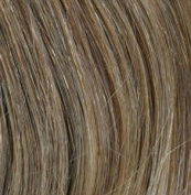 Full Head Human Clip-In #10/12 (Medium Ash w/ Light Ash Highlights) 41cm