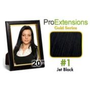 ProExtensions #1 Jet Black Pro Cute - Gold Series