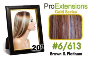 ProExtensions #6/613 Brown w/Platinum Highlights Pro Cute - Gold Series