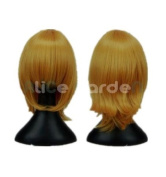 SureWells Nice wigs Vampire Knight,TouhouProject Mix Golden Cosplay Wigs