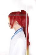 Anime Ao No Exorcist Shura Kirigakure RED long straight cosplay party wig jf010305