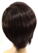 Short Black Wig - Quality Kanekalon Synthetic Hair Loss Replacement Natural Looking Fashion for Ladies & Girls