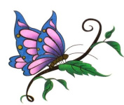 GGSELL Waterproof colour tattoo stickers insects butterflies