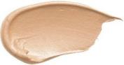 Concealer - Neutral Amber