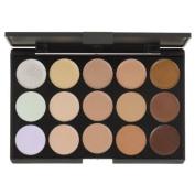 Blush Professional 15 Colour Concealer Palette