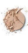Beauticontrol Wet Dry Foundation P2