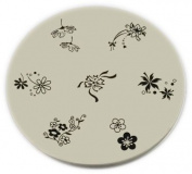 Konad Stamping Nail Art Image Plate - M31 [Misc.]