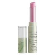 CoverGirl Natureluxe Gloss - Balm, Tulip 205 - 0ml