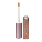 2 PACK NEW Covergirl Wetslicks Crystals Bubble #405 Lip Gloss CG