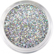 Moyou Nail Art Tiny Hexagon Glitters - Silver