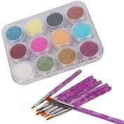 12 Colour Nail Art Sparkle Glitter Powder Dust Tips Decoration + 7pcs Acrylic Painting Brush Set