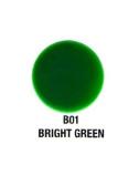 Verity Nail Polish Bright Green B01