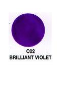 Verity Nail Polish Brilliant Violet C02