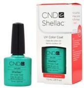 CND Shellac HOTSKI TO TCHOTCHKE Gel UV Nail Polish 5ml Manicure Soak Off 1/4