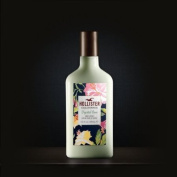 Womens Hollister Crystal Cove Body Lotion Kiwi Strawberry Scented