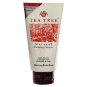 TEA Tree Natural Whitening Complex Lightening Skin Facial Foam :140g