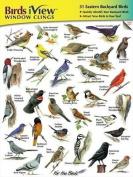 Birds iView Window Clings, 31 Eastern Backyard Birds