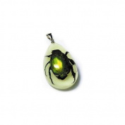 Ed Speldy East YD1105 Real Bug Necklace-Chafer Beetle