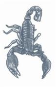 Scorpion Prison Temporary Tattoo