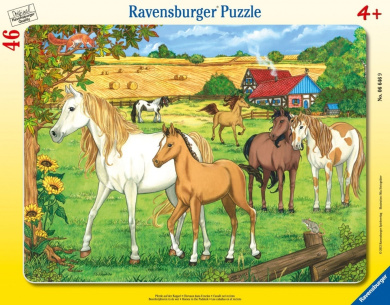 Horses in The Paddock Frame Puzzle, 46-Piece