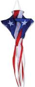 Premier Kites 99714 Patriotic Star Twister Wind Spinner, 80cm