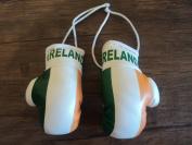 Ireland Flag Mini Boxing Gloves