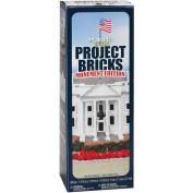FloraCraft Monumnet Edition Project White Foam Bricks