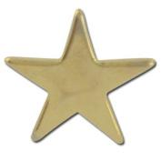 Star Flat 2 Lapel Pin