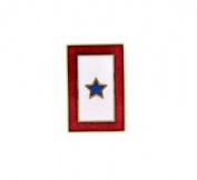 Hand enamelled patriotic star lapel pin