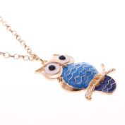 Owl Necklace Long Chain, Owl Pendant in Aquae and Blue Tail, Retro Owl Pendant With 63.5cm Chain Colour Gold