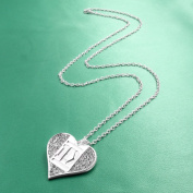 One Direction '1D' Crystal Heart Necklace