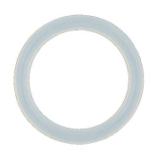 One Clear Silicone O-Ring