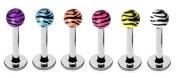 "6 Zebra Animal Tiger Print Unique balls Labret Monroe lip tragus piercing bar Ring 16g, 5/16"""