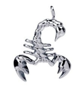 Scorpion Pendant - Collectible Medallion Necklace Accessory Jewellery