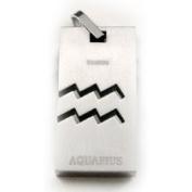 Accents Kingdom Titanium Aquarius Zodiac Sign Pendant Necklace 50.8cm ,