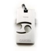 Accents Kingdom Titanium Cancer Zodiac Sign Pendant Necklace 50.8cm ,
