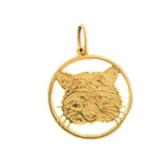 14K Yellow Gold Racoon Pendant