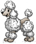Art Impressions Dogs Cling Rubber Stamp-Poodle