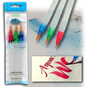 Aqua Flo Brush Set, 3/pkg
