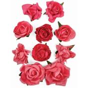 Paper Blooms 2.5cm To 3.8cm 10/Pkg-Hot Pink