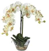 Double Phalaenopsis with Glass Vase Silk Flower Arrangement