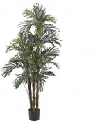 Nearly Natural 5283 5 ft. Robellini Palm Silk Tree
